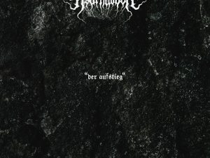 """Cover von """"Der Aufstieg"""""""